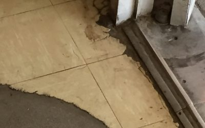 Which sized Floor Tiles contain Asbestos?