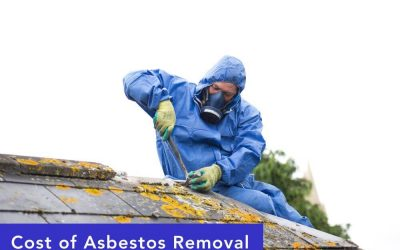 Asbestos Removal Costs and Information